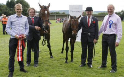 All Ireland Broodmare and Foal Championship